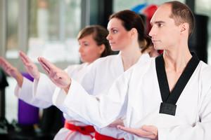 Teambuilding, Teamentwicklung, Teamtraining durch Kampfkunst